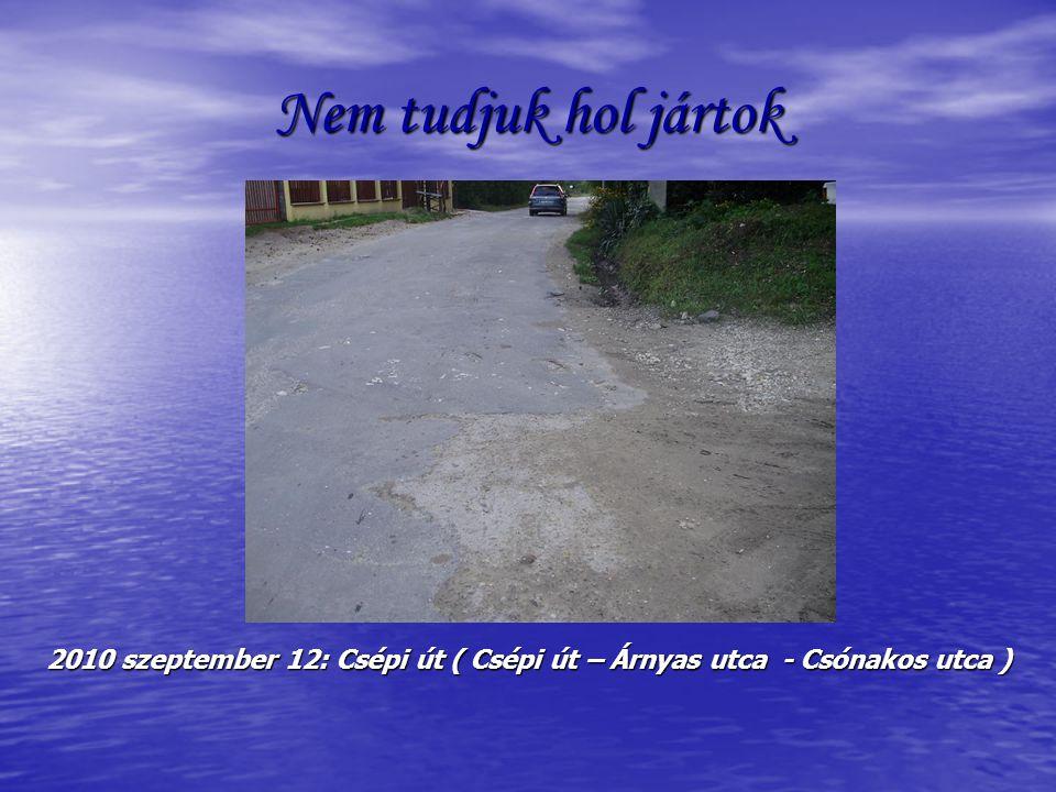 Nem tudjuk hol jártok 2010 szeptember 12: Csépi út ( Csépi út – Árnyas utca - Csónakos utca )