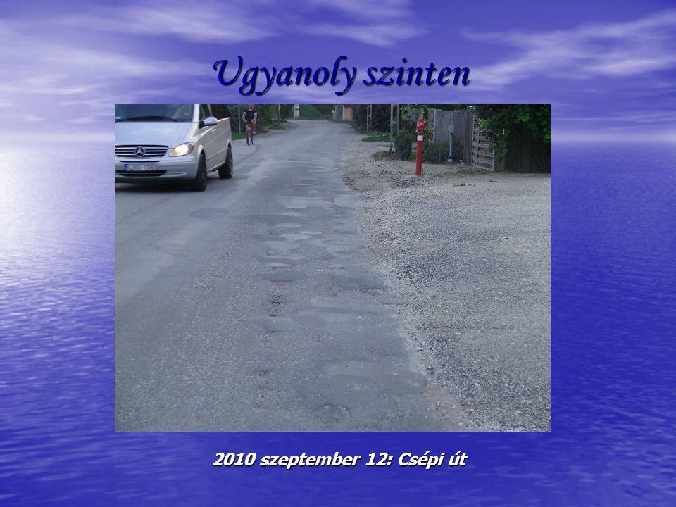 Ugyanoly szinten 2010 szeptember 12: Csépi út