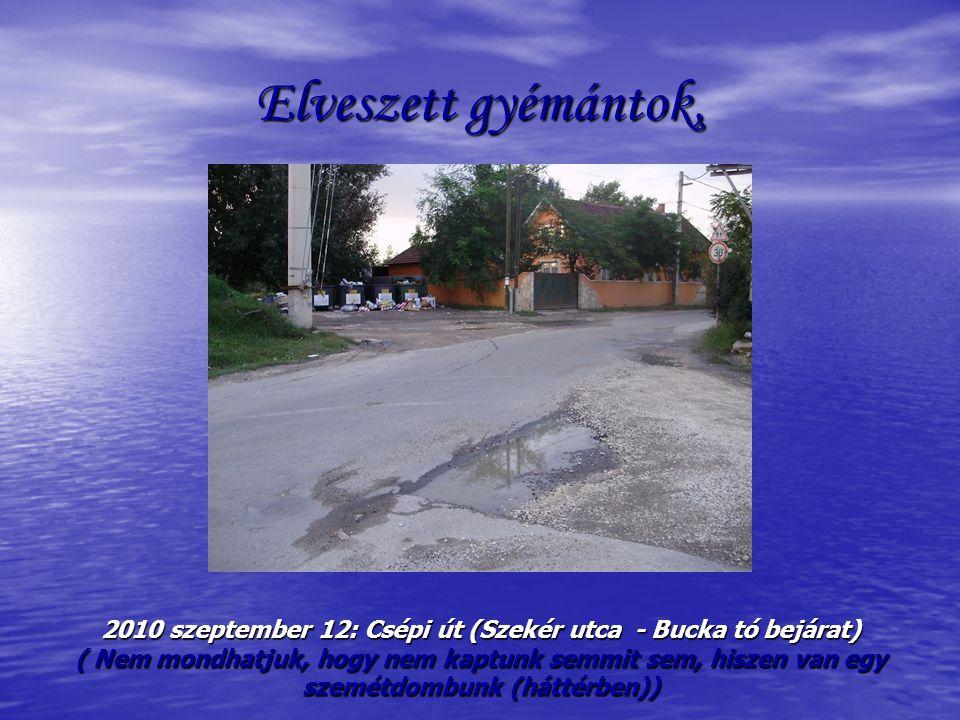 Elveszett gyémántok, 2010 szeptember 12: Csépi út (Szekér utca - Bucka tó bejárat) ( Nem mondhatjuk, hogy nem kaptunk semmit sem, hiszen van egy szemétdombunk (háttérben))