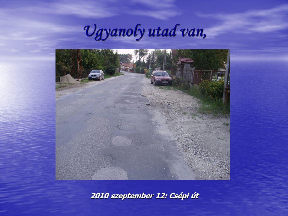Ugyanoly utad van, 2010 szeptember 12: Csépi út
