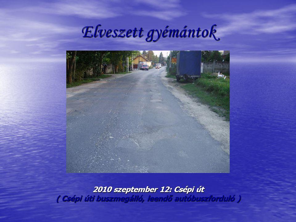 Elveszett gyémántok 2010 szeptember 12: Csépi út ( Csépi úti buszmegálló, leendő autóbuszforduló )