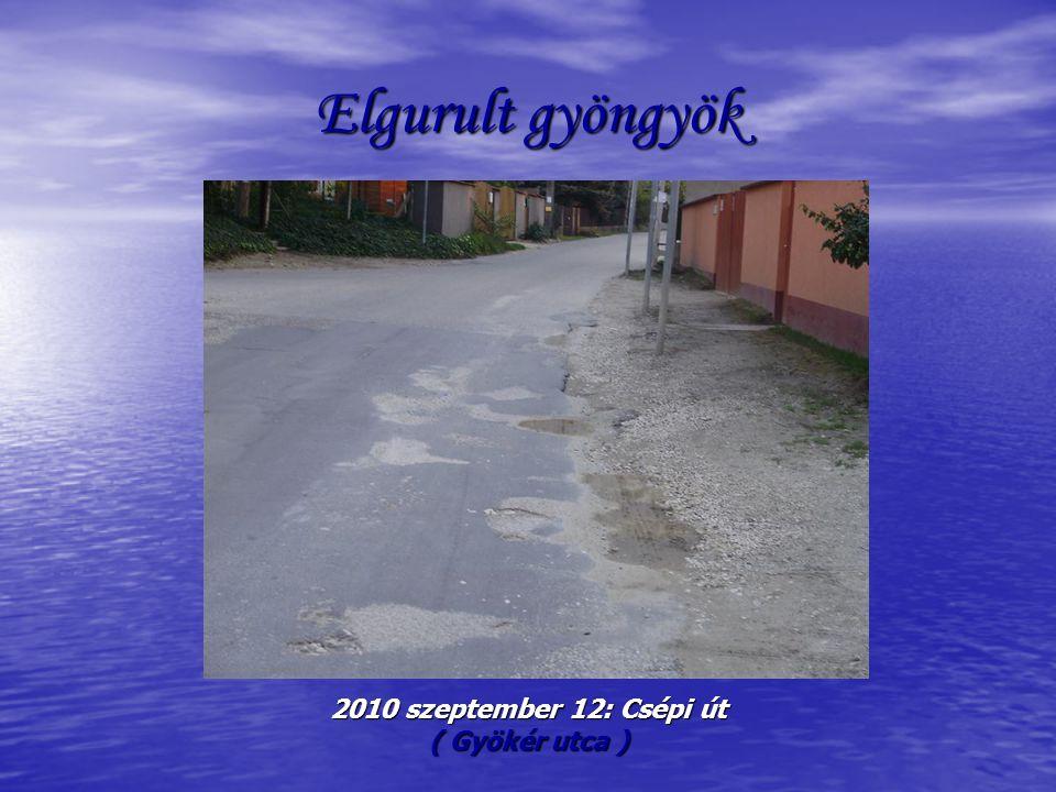 Elgurult gyöngyök 2010 szeptember 12: Csépi út ( Gyökér utca )
