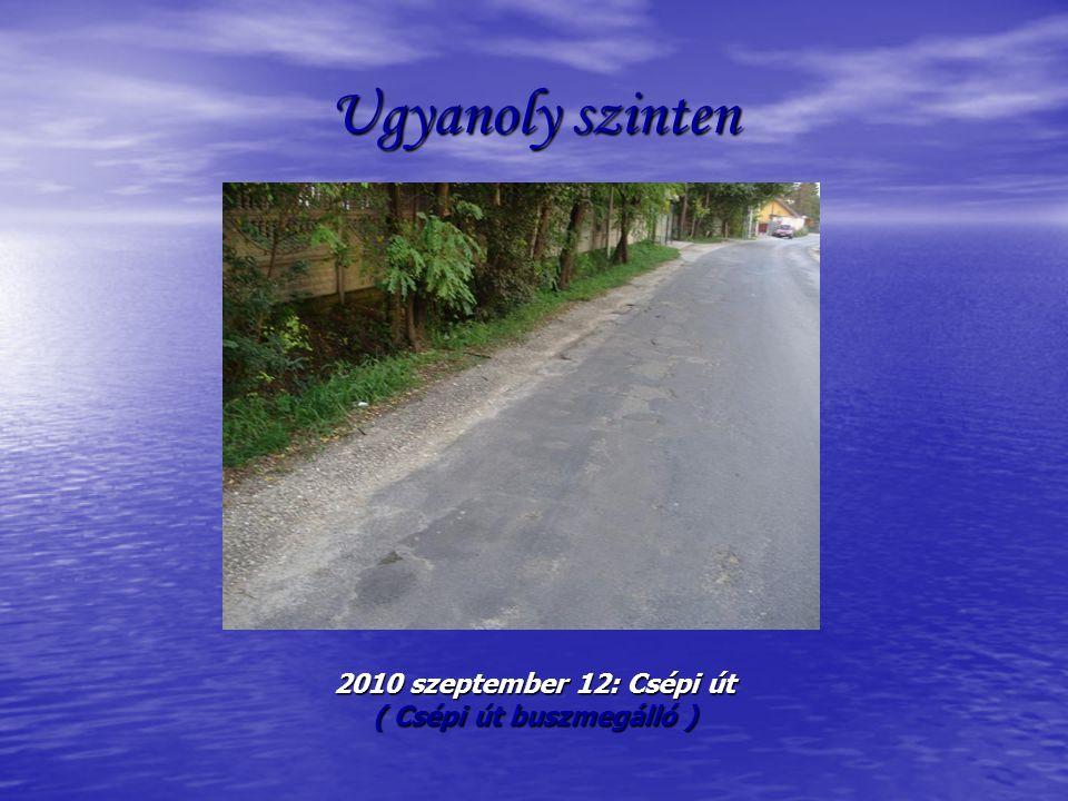 Ugyanoly szinten 2010 szeptember 12: Csépi út ( Csépi út buszmegálló )