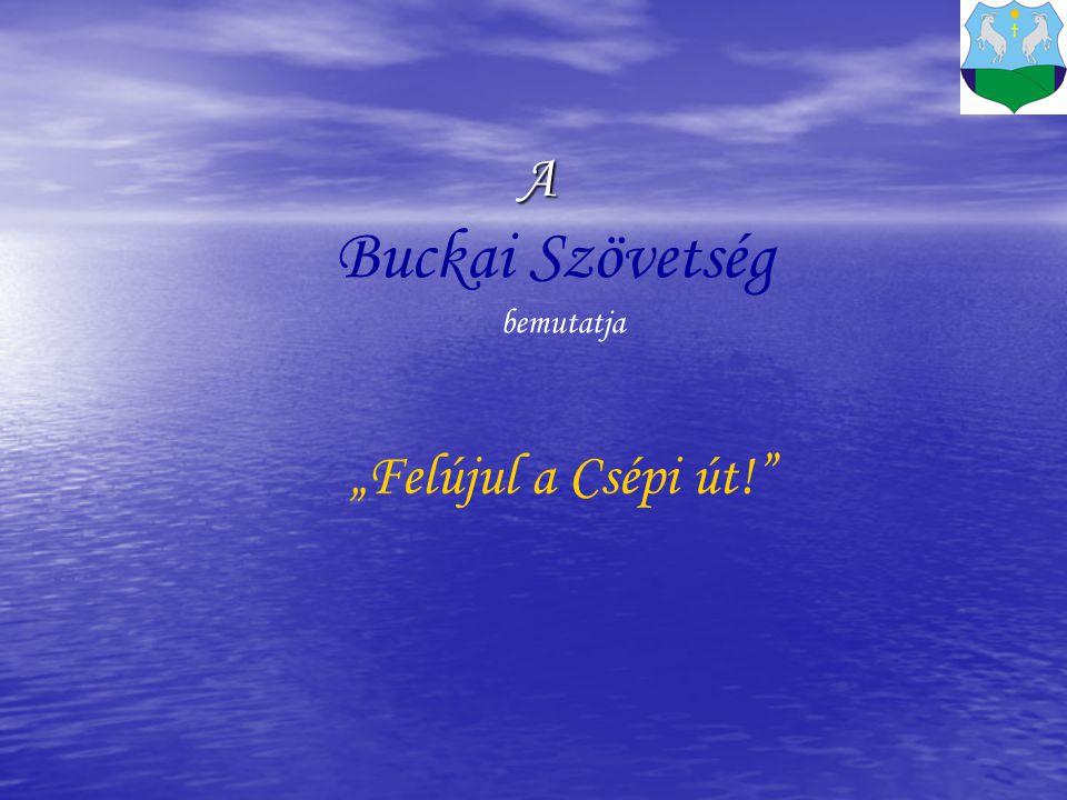 """A Buckai Szövetség bemutatja """"Felújul a Csépi út!"""