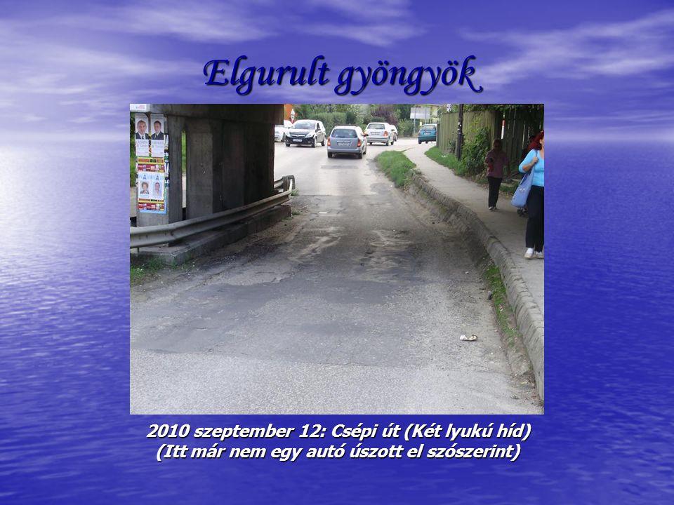 Mind vissza jöttök (?) 2010 szeptember 12: Csépi út ( Hogy miért kell útterelő elem? Hát… ezért! )