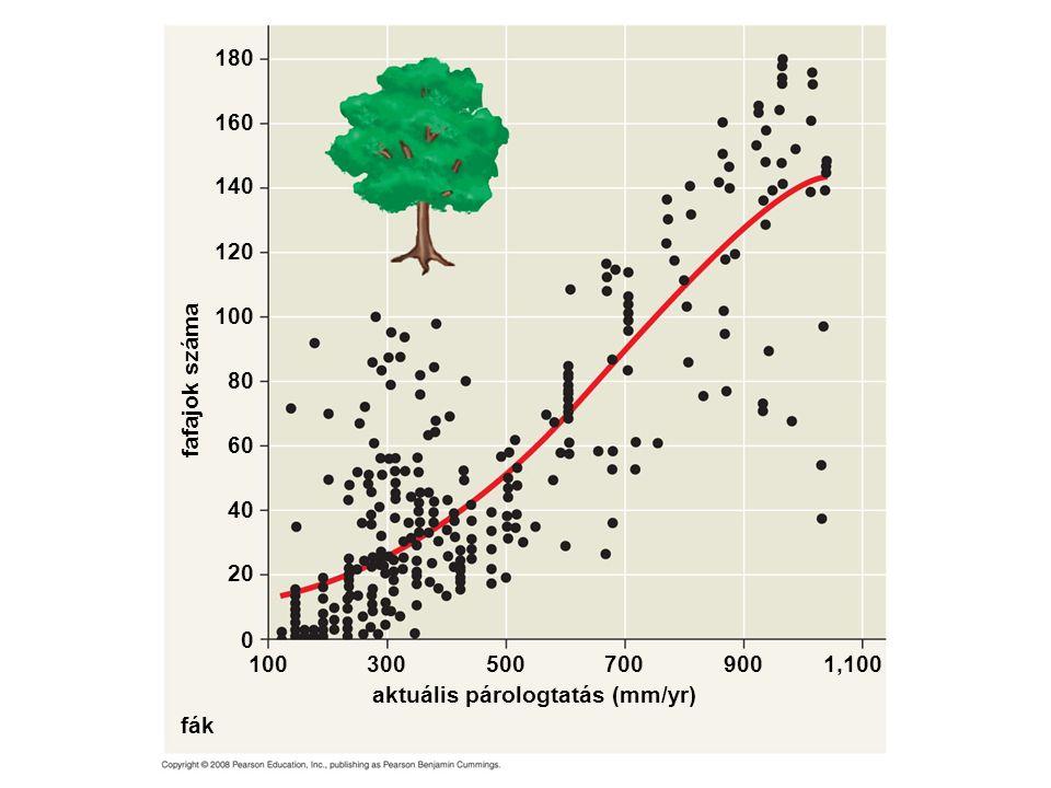 fák aktuális párologtatás (mm/yr) fafajok száma 160 120 100 140 180 80 60 40 20 0 1003005009001,100700