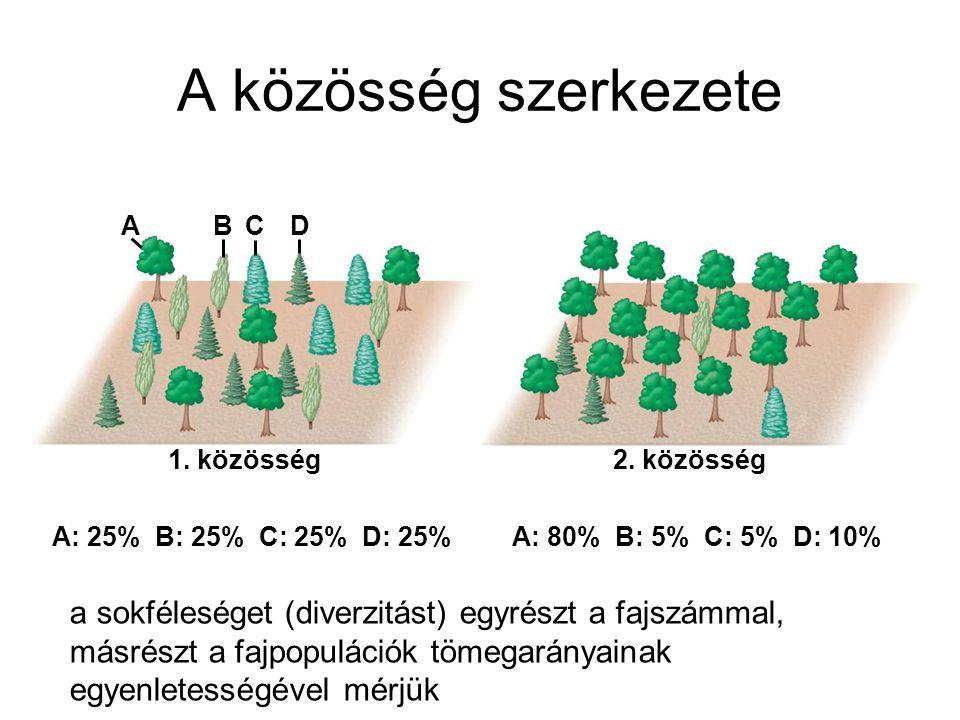 A közösség szerkezete 1. közösség2. közösség ABCD A: 25% B: 25% C: 25% D: 25% A: 80% B: 5% C: 5% D: 10% a sokféleséget (diverzitást) egyrészt a fajszá