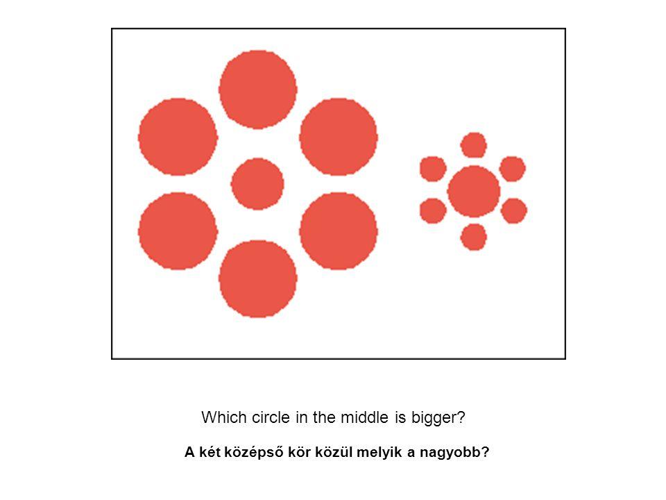 Which circle in the middle is bigger? A két középső kör közül melyik a nagyobb?