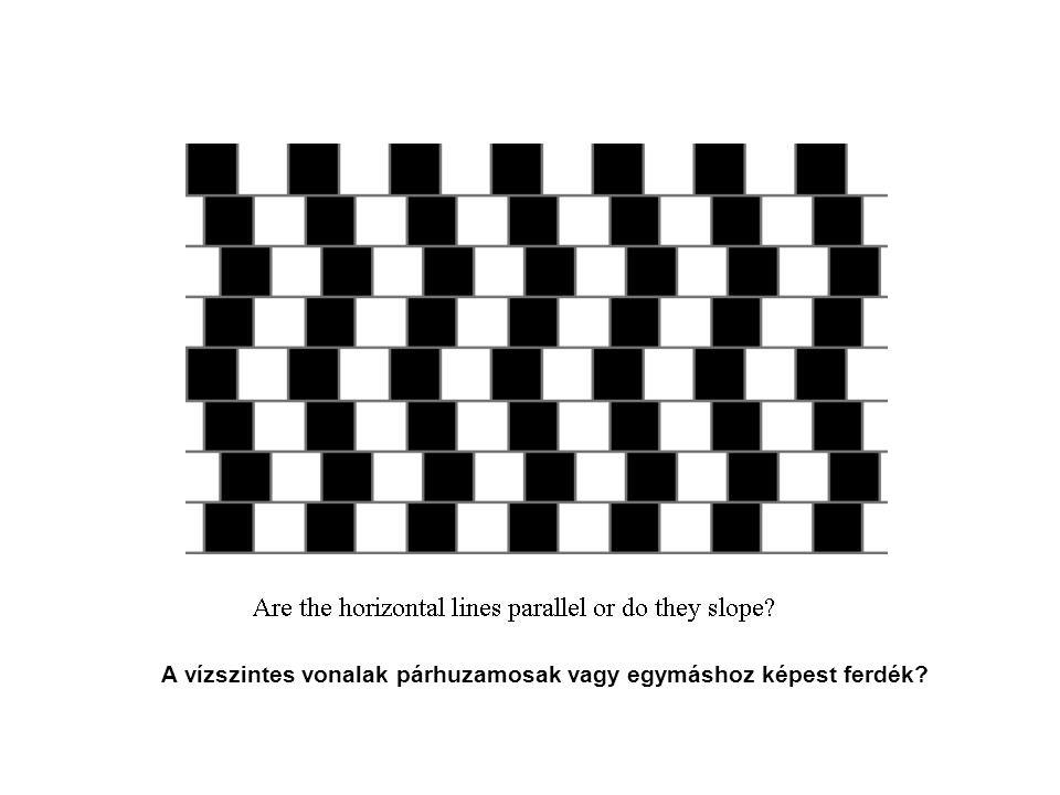 A vízszintes vonalak párhuzamosak vagy egymáshoz képest ferdék?