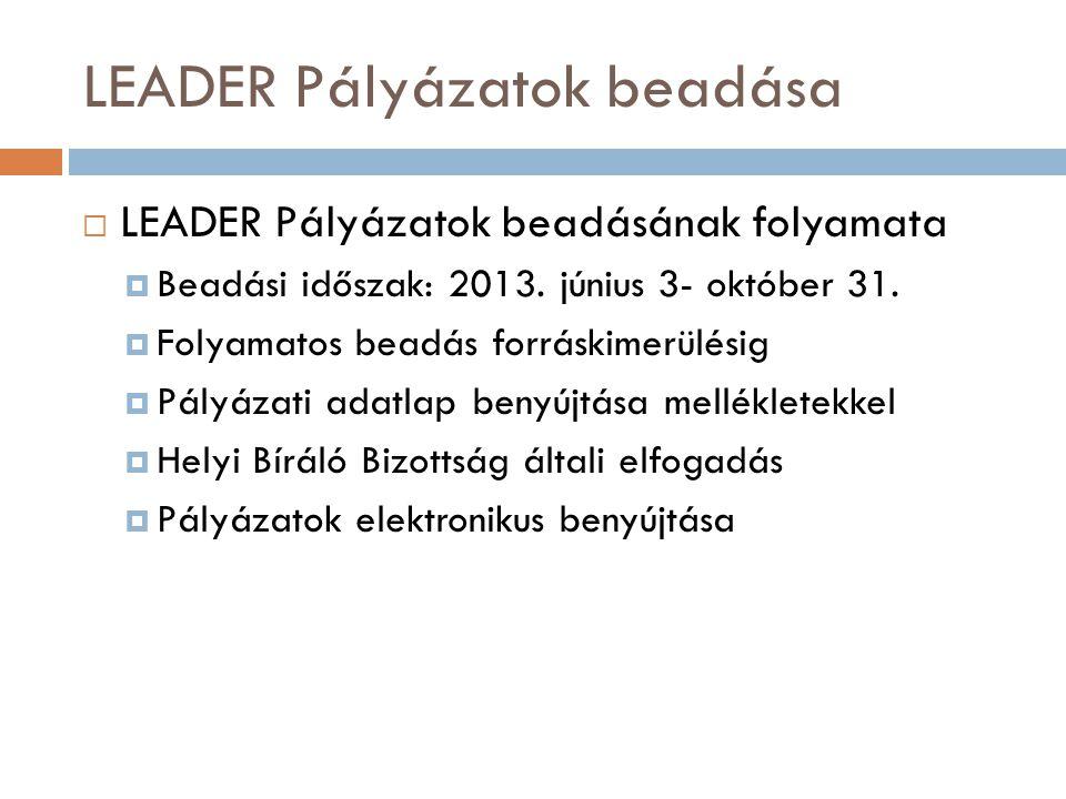 LEADER Pályázatok beadása  LEADER Pályázatok beadásának folyamata  Beadási időszak: 2013.