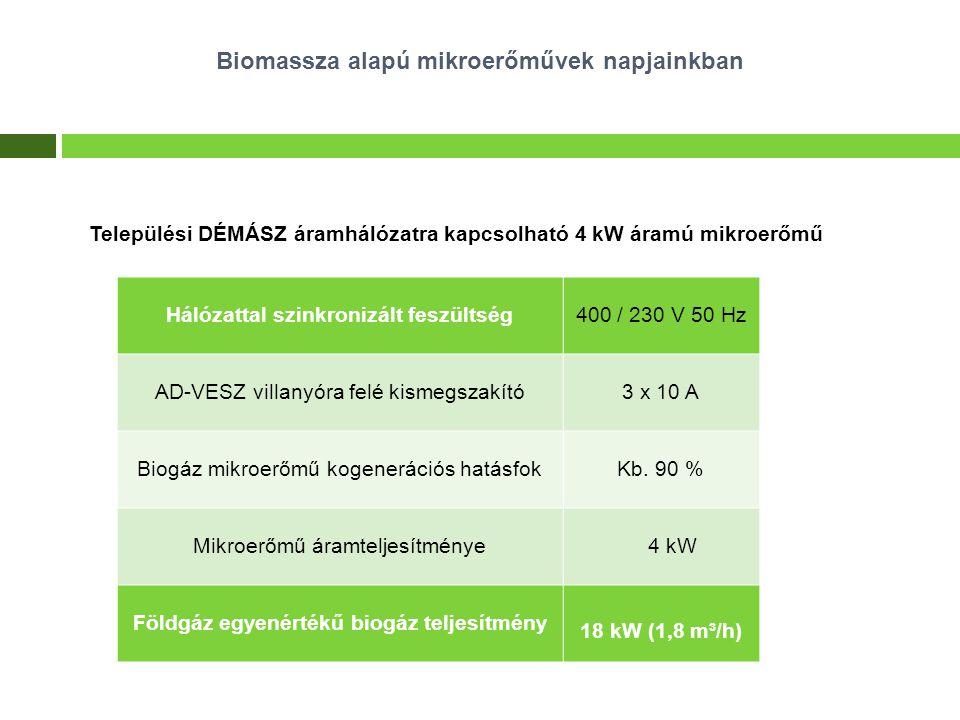 Települési DÉMÁSZ áramhálózatra kapcsolható 4 kW áramú mikroerőmű Hálózattal szinkronizált feszültség400 / 230 V 50 Hz AD-VESZ villanyóra felé kismegs