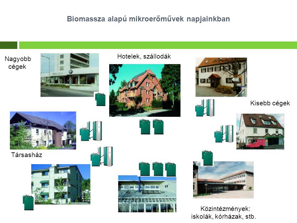 Kisebb cégek Közintézmények: iskolák, kórházak, stb. Társasház Hotelek, szállodák Biomassza alapú mikroerőművek napjainkban Nagyobb cégek