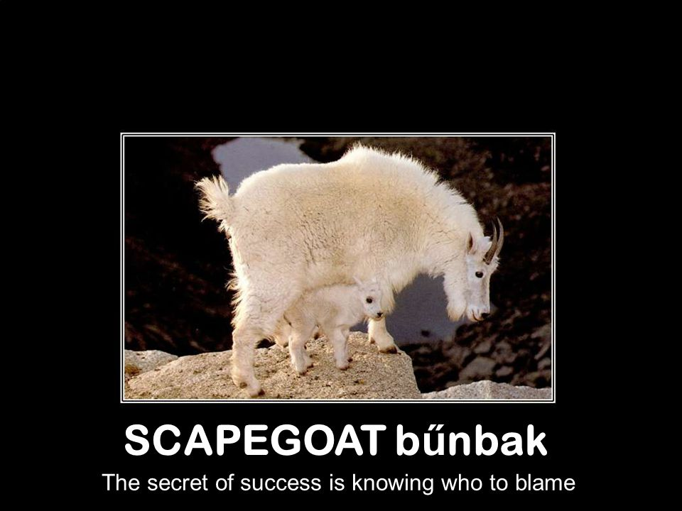 SCAPEGOAT b ű nbak The secret of success is knowing who to blame