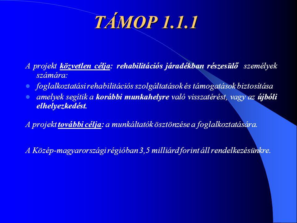 TÁMOP 1.1.1 A projekt közvetlen célja: rehabilitációs járadékban részesülő személyek számára: foglalkoztatási rehabilitációs szolgáltatások és támogat