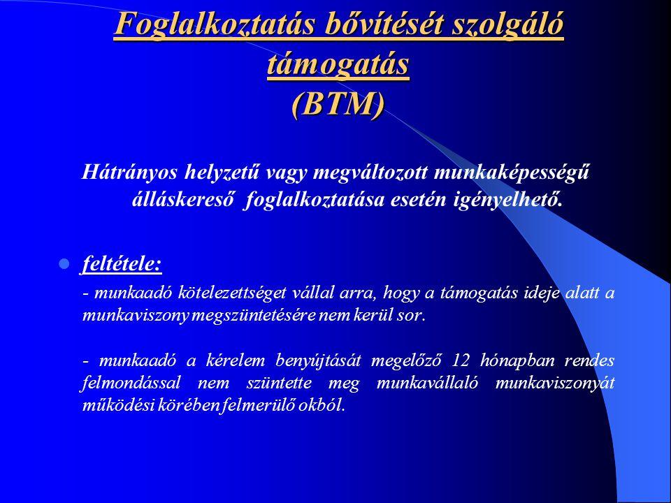 Foglalkoztatás bővítését szolgáló támogatás (BTM) Hátrányos helyzetű vagy megváltozott munkaképességű álláskereső foglalkoztatása esetén igényelhető.
