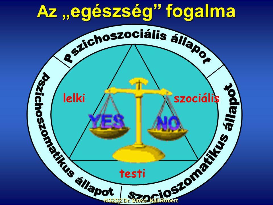 """Az """" egészség fogalma lelkiszociális testi NSZSZ Dr. Sinkó–Káli Róbert NSZSZ Dr. Sinkó–Káli Róbert"""