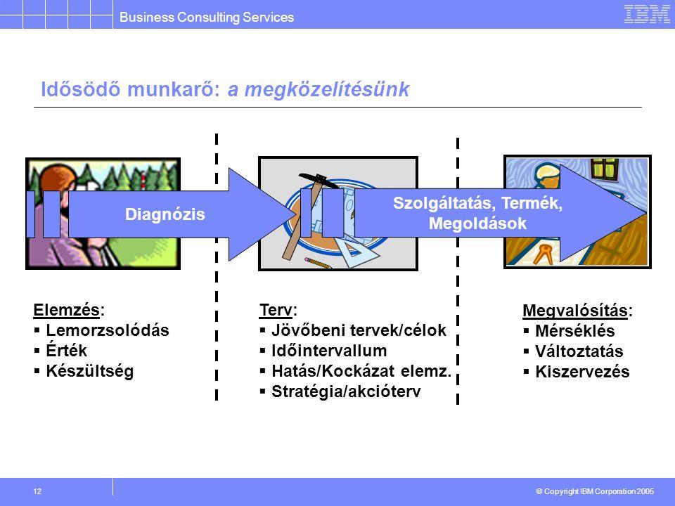 Business Consulting Services © Copyright IBM Corporation 2005 12 Idősödő munkarő: a megközelítésünk Terv:  Jövőbeni tervek/célok  Időintervallum  Hatás/Kockázat elemz.