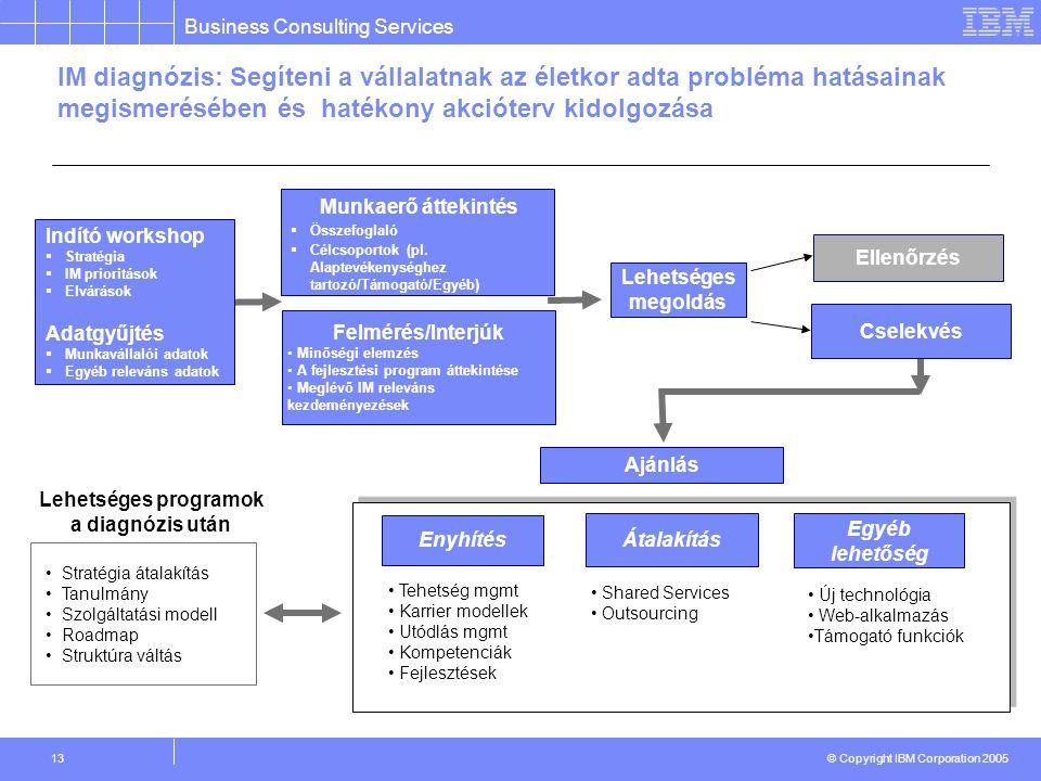 Business Consulting Services © Copyright IBM Corporation 2005 13 Munkaerő áttekintés  Összefoglaló  Célcsoportok (pl.