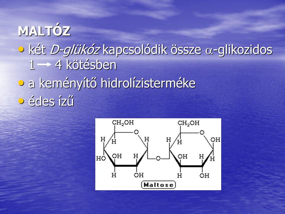 MALTÓZ két D-glükóz kapcsolódik össze  -glikozidos 1 4 kötésben két D-glükóz kapcsolódik össze  -glikozidos 1 4 kötésben a keményítő hidrolízistermé