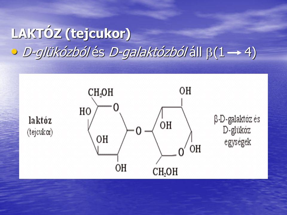 LAKTÓZ (tejcukor) D-glükózból és D-galaktózból áll  (1 4) D-glükózból és D-galaktózból áll  (1 4)