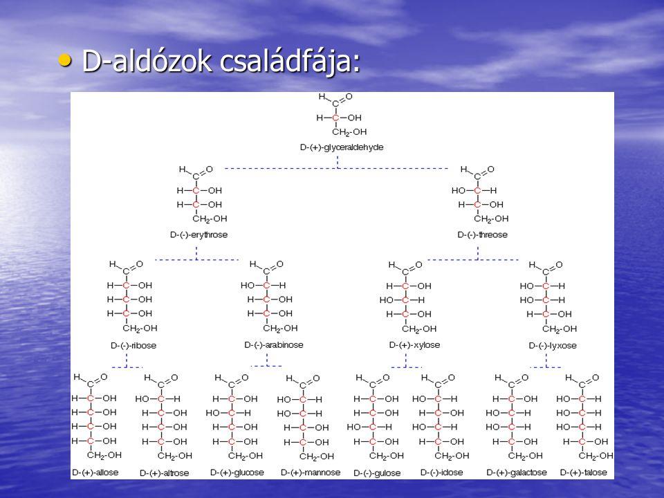 epimerek: azok a monoszacharidok, melyek konfigurációja csak egy szénatomon különbözik epimerek: azok a monoszacharidok, melyek konfigurációja csak egy szénatomon különbözik