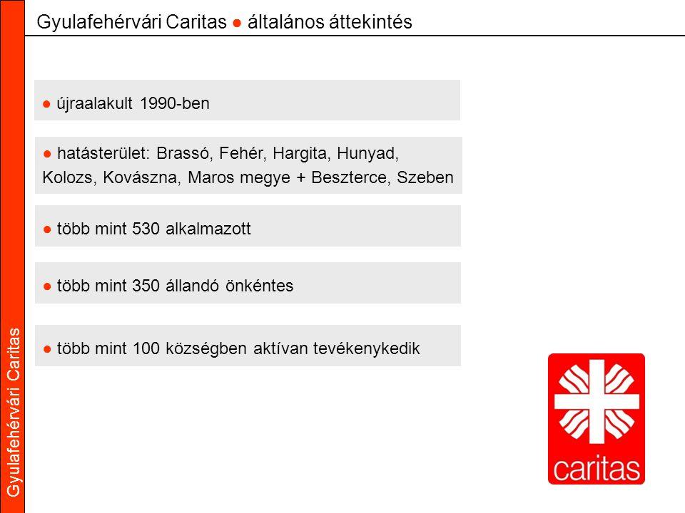 Gyulafehérvári Caritas Gyulafehérvári Caritas ● általános áttekintés ● több mint 530 alkalmazott ● több mint 350 állandó önkéntes ● hatásterület: Bras