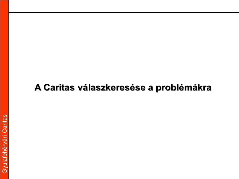 Gyulafehérvári Caritas A Caritas válaszkeresése a problémákra