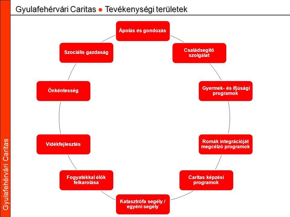 Gyulafehérvári Caritas Gyulafehérvári Caritas ● Tevékenységi területek Ápolás és gondozás Családsegítő szolgálat Gyermek- és ifjúsági programok Romák integrációját megcélzó programok Caritas képzési programok Katasztrófa segély / egyéni segély Fogyatékkal élők felkarolása VidékfejlesztésÖnkéntességSzociális gazdaság