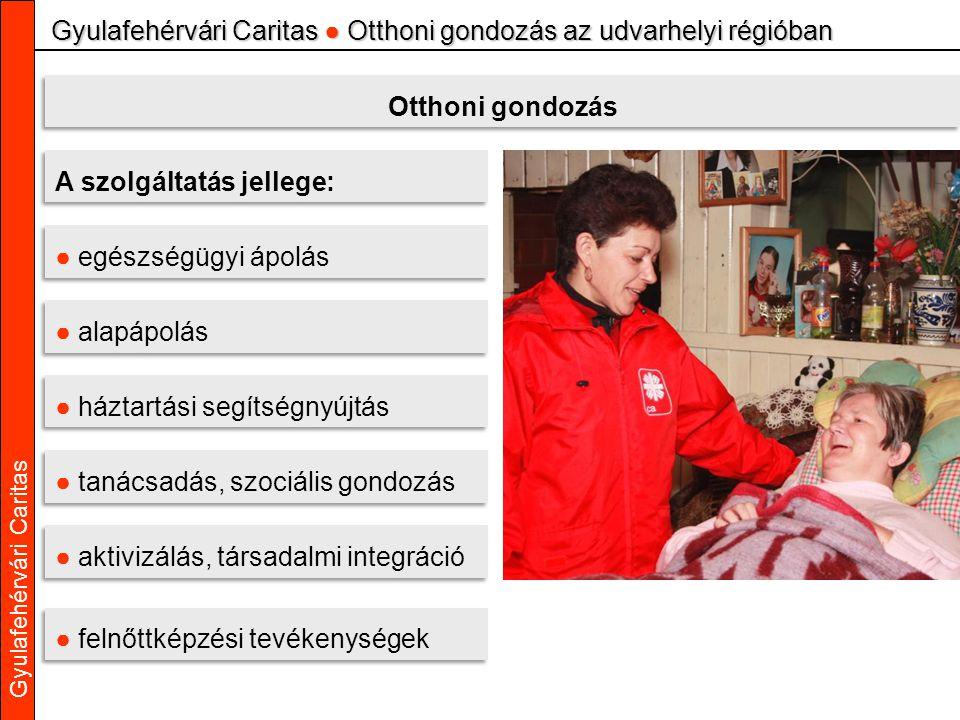 Gyulafehérvári Caritas Gyulafehérvári Caritas ● Otthoni gondozás az udvarhelyi régióban Otthoni gondozás A szolgáltatás jellege: ● egészségügyi ápolás