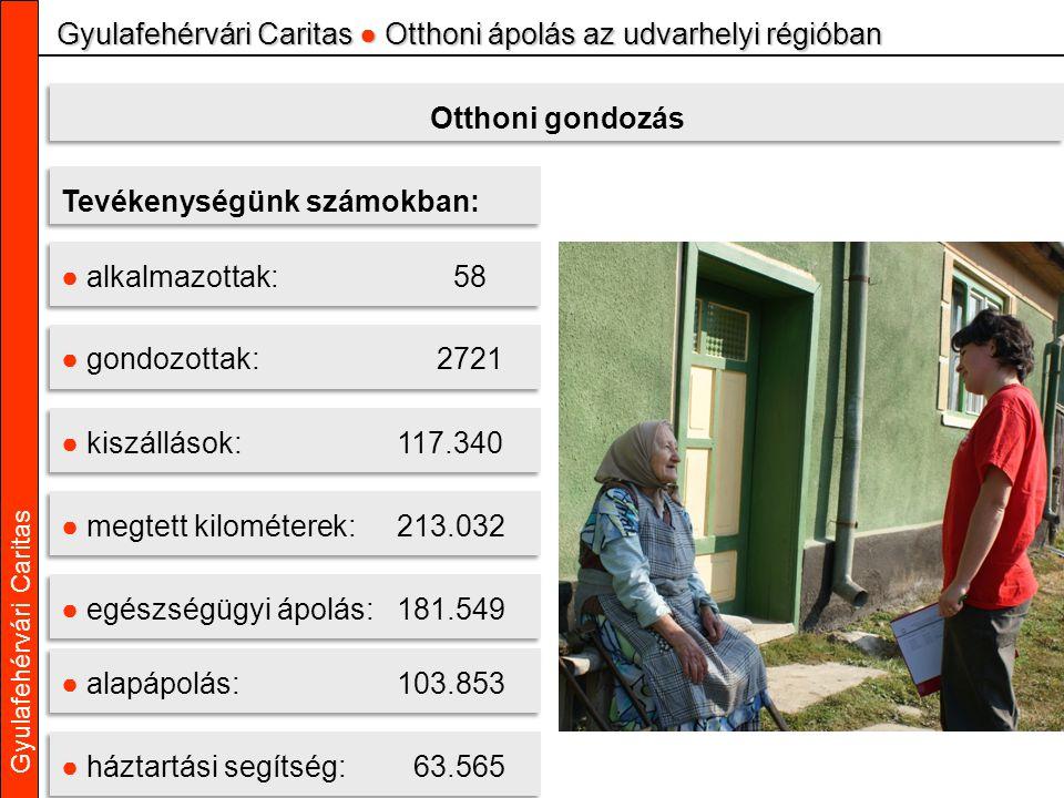 Gyulafehérvári Caritas Gyulafehérvári Caritas ● Otthoni ápolás az udvarhelyi régióban Tevékenységünk számokban: ● kiszállások: 117.340 ● megtett kilom