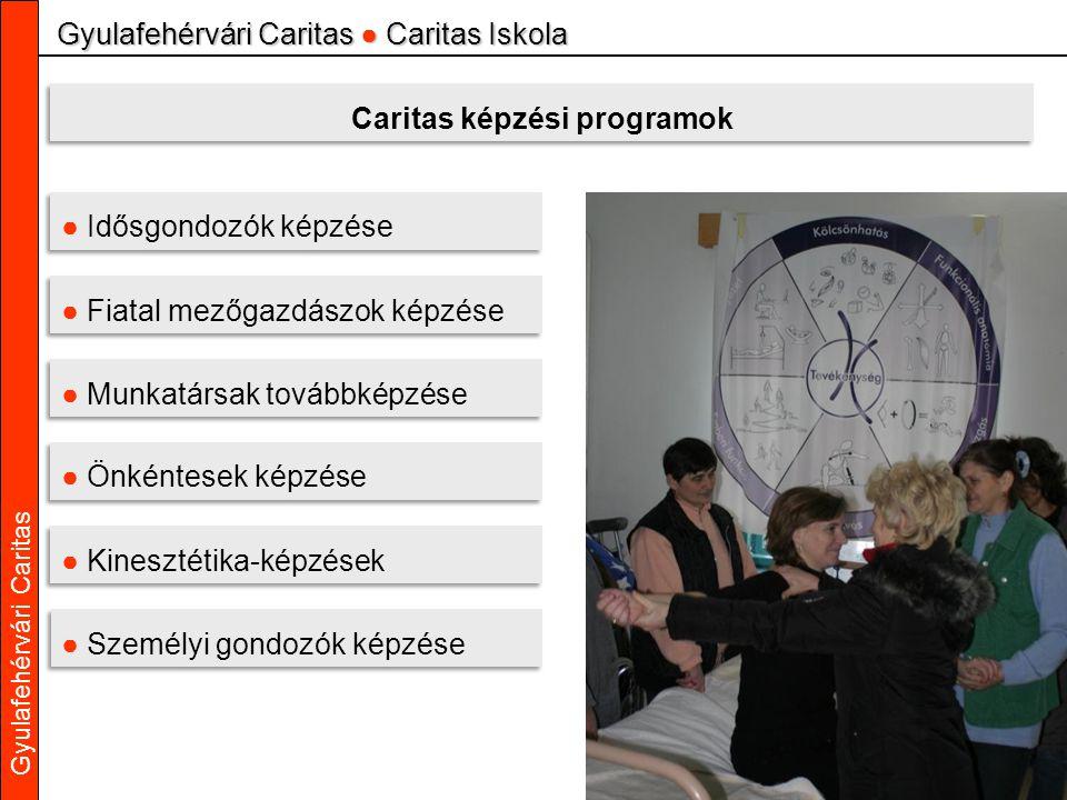 Gyulafehérvári Caritas Gyulafehérvári Caritas ● Caritas Iskola Caritas képzési programok ● Idősgondozók képzése ● Fiatal mezőgazdászok képzése ● Munka