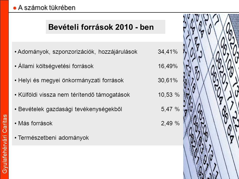 Gyulafehérvári Caritas Bevételi források 2010 - ben Adományok, szponzorizációk, hozzájárulások34,41% Állami költségvetési források16,49% Helyi és megy