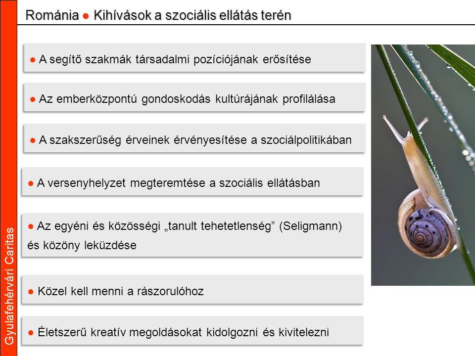 """Gyulafehérvári Caritas ● A segítő szakmák társadalmi pozíciójának erősítése ● Az emberközpontú gondoskodás kultúrájának profilálása ● A szakszerűség érveinek érvényesítése a szociálpolitikában ● A versenyhelyzet megteremtése a szociális ellátásban ● Az egyéni és közösségi """"tanult tehetetlenség (Seligmann) és közöny leküzdése ● Az egyéni és közösségi """"tanult tehetetlenség (Seligmann) és közöny leküzdése ● Közel kell menni a rászorulóhoz Románia ● Kihívások a szociális ellátás terén ● Életszerű kreatív megoldásokat kidolgozni és kivitelezni"""
