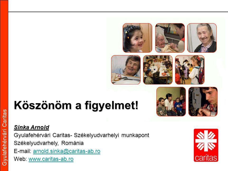 Gyulafehérvári Caritas Köszönöm a figyelmet! Sinka Arnold Gyulafehérvári Caritas- Székelyudvarhelyi munkapont Székelyudvarhely, Románia E-mail: a a a