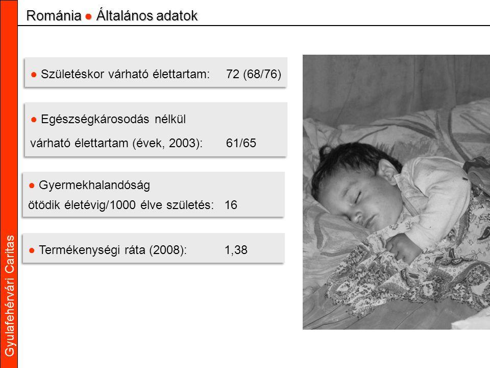 Gyulafehérvári Caritas ● Születéskor várható élettartam:72 (68/76) ● Egészségkárosodás nélkül várható élettartam (évek, 2003):61/65 ● Egészségkárosodás nélkül várható élettartam (évek, 2003):61/65 ● Gyermekhalandóság ötödik életévig/1000 élve születés:16 ● Gyermekhalandóság ötödik életévig/1000 élve születés:16 ● Termékenységi ráta (2008):1,38 Románia ● Általános adatok
