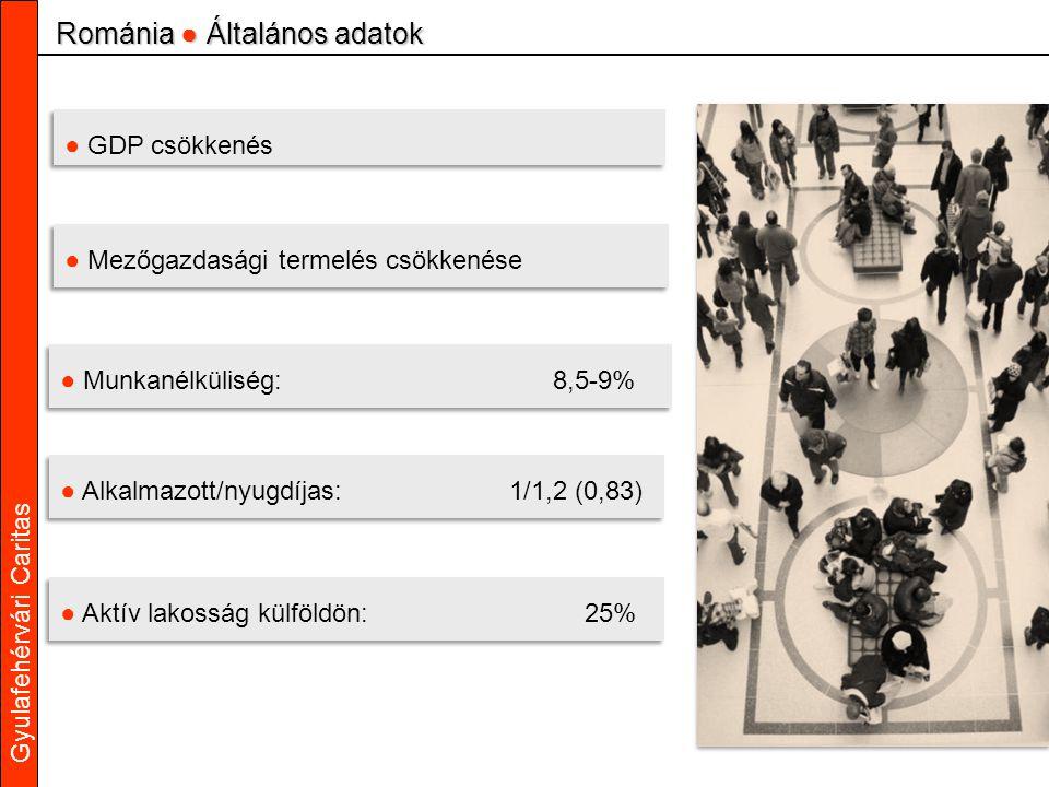 Gyulafehérvári Caritas ● GDP csökkenés ● Mezőgazdasági termelés csökkenése ● Munkanélküliség: 8,5-9% ● Alkalmazott/nyugdíjas: 1/1,2 (0,83) Románia ● Általános adatok ● Aktív lakosság külföldön:25%