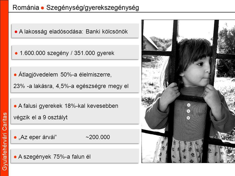 """Gyulafehérvári Caritas ● Átlagjövedelem 50%-a élelmiszerre, 23% -a lakásra, 4,5%-a egészségre megy el ● Átlagjövedelem 50%-a élelmiszerre, 23% -a lakásra, 4,5%-a egészségre megy el ● A falusi gyerekek 18%-kal kevesebben végzik el a 9 osztályt ● A falusi gyerekek 18%-kal kevesebben végzik el a 9 osztályt Románia ● Szegénység/gyerekszegénység ● """"Az eper árvái ~200.000 ● A lakosság eladósodása: Banki kölcsönök ● 1.600.000 szegény / 351.000 gyerek ● A szegények 75%-a falun él"""
