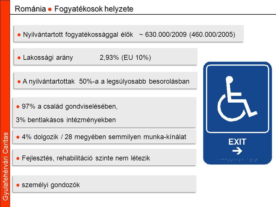 Gyulafehérvári Caritas ● Nyilvántartott fogyatékossággal élők ~ 630.000/2009 (460.000/2005) ● Lakossági arány2,93% (EU 10%) ● A nyilvántartottak 50%-a a legsúlyosabb besorolásban ● 97% a család gondviselésében, 3% bentlakásos intézményekben ● 97% a család gondviselésében, 3% bentlakásos intézményekben ● 4% dolgozik / 28 megyében semmilyen munka-kínálat ● Fejlesztés, rehabilitáció szinte nem létezik Románia ● Fogyatékosok helyzete ● személyi gondozók