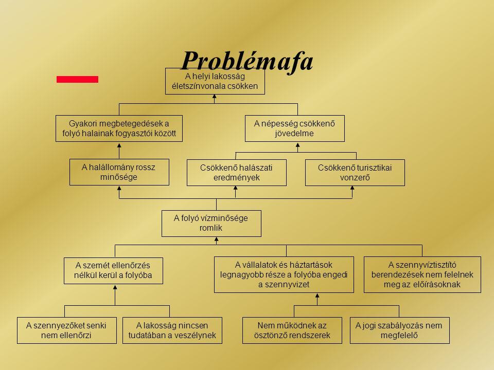 Célkitűzés-elemzés Problémafa:  A jelenlegi helyzet negatívumai  Kulcsprobléma  Ok-okozati kapcsolatok Célfa:  A kívánt jövőbeli helyzet pozitívumai  Konkrét célkitűzés  Eszköz-cél összefüggések