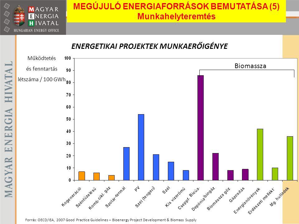 ENERGETIKAI PROJEKTEK MUNKAERŐIGÉNYE Forrás: OECD/IEA, 2007 Good Practice Guidelines – Bioenergy Project Development & Biomass Supply Működtetés és fe