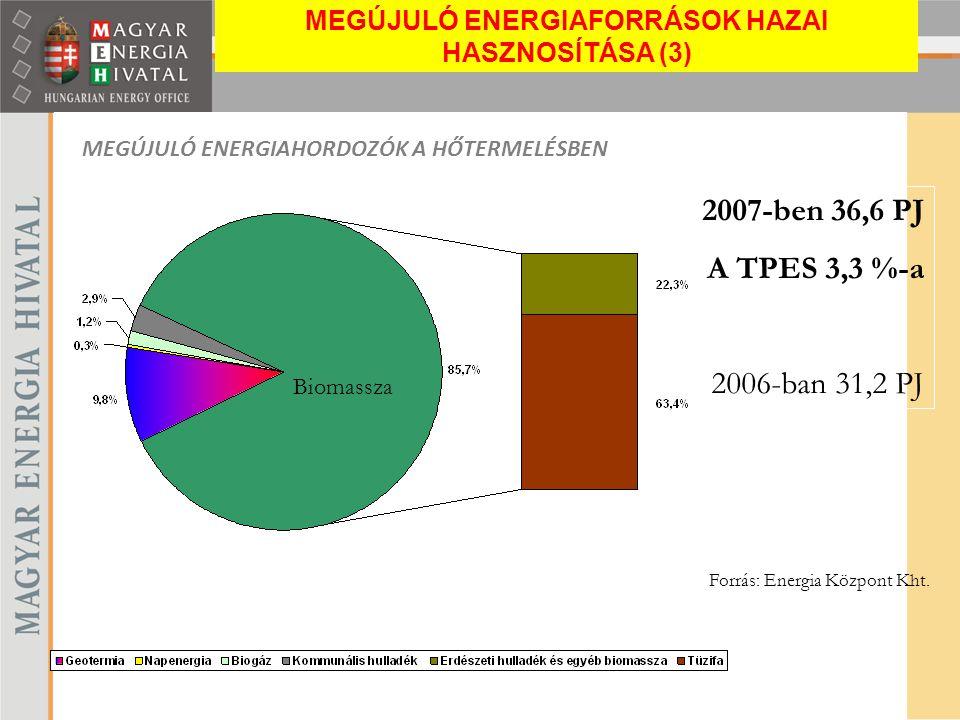 MEGÚJULÓ ENERGIAHORDOZÓK A HŐTERMELÉSBEN Forrás: Energia Központ Kht. 2007-ben 36,6 PJ A TPES 3,3 %-a 2006-ban 31,2 PJ Biomassza MEGÚJULÓ ENERGIAFORRÁ