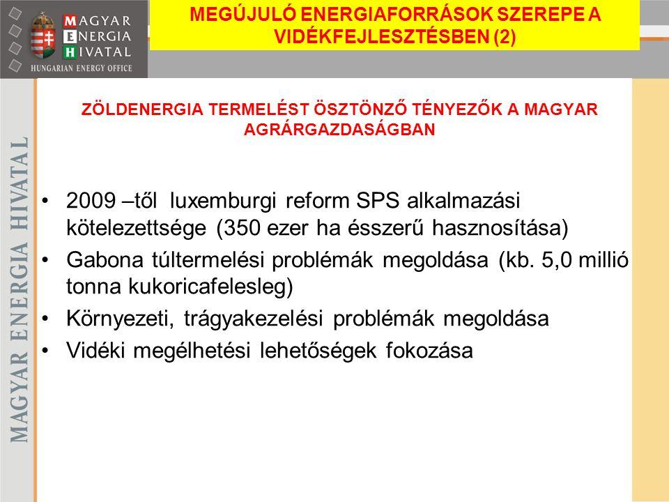 ZÖLDENERGIA TERMELÉST ÖSZTÖNZŐ TÉNYEZŐK A MAGYAR AGRÁRGAZDASÁGBAN 2009 –től luxemburgi reform SPS alkalmazási kötelezettsége (350 ezer ha ésszerű hasz