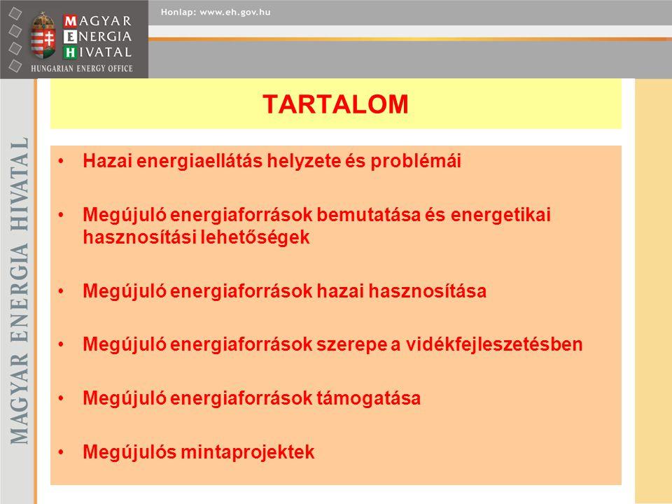 TARTALOM Hazai energiaellátás helyzete és problémái Megújuló energiaforrások bemutatása és energetikai hasznosítási lehetőségek Megújuló energiaforrás