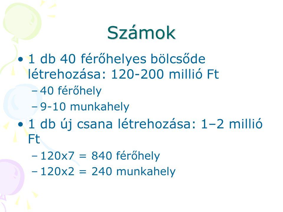 Számok 1 db 40 férőhelyes bölcsőde létrehozása: 120-200 millió Ft –40 férőhely –9-10 munkahely 1 db új csana létrehozása: 1–2 millió Ft –120x7 = 840 f