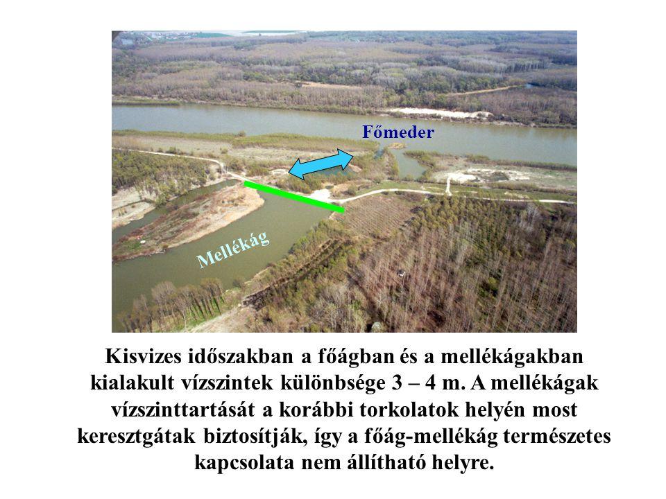 Mellékág Főmeder Kisvizes időszakban a főágban és a mellékágakban kialakult vízszintek különbsége 3 – 4 m. A mellékágak vízszinttartását a korábbi tor