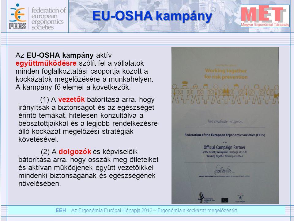 EEH – Az ergonómia európai hónapja 2012 – Ergonómia a kockázat megelőzésért EEH - Az Ergonómia Európai Hónapja 2013 – Ergonómia a kockázat-megelőzésért EEH 2012 - 2013 EEH 2012 - 2013 -Ebben az évben az EEH 2013 célja az ergonómia szerepének bemutatása a kockázat-megelőzésben.