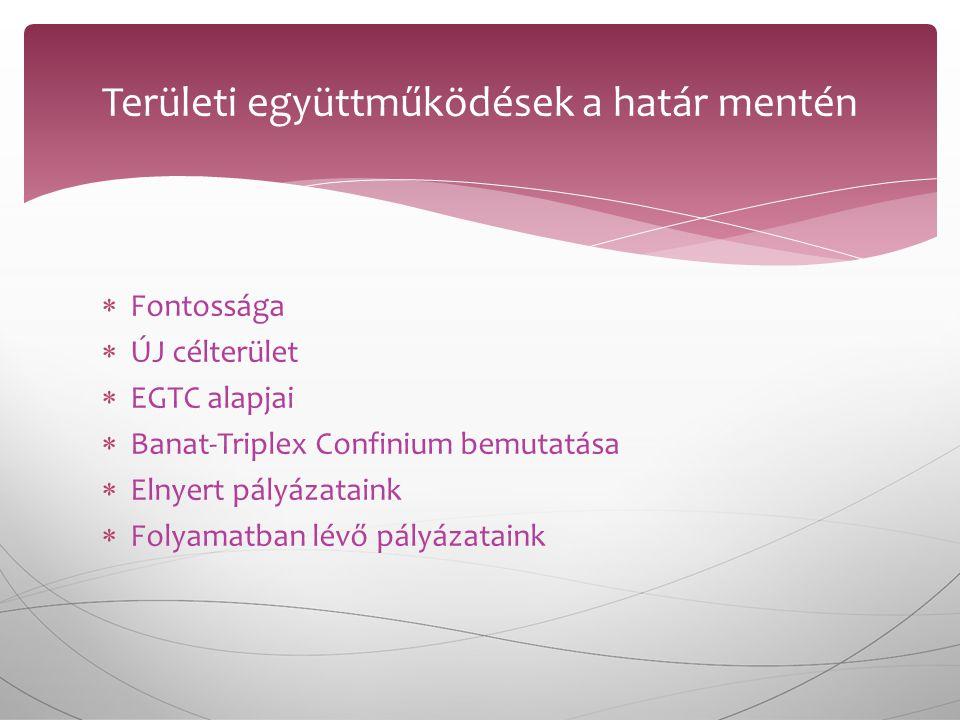  Fontossága  ÚJ célterület  EGTC alapjai  Banat-Triplex Confinium bemutatása  Elnyert pályázataink  Folyamatban lévő pályázataink Területi együttműködések a határ mentén