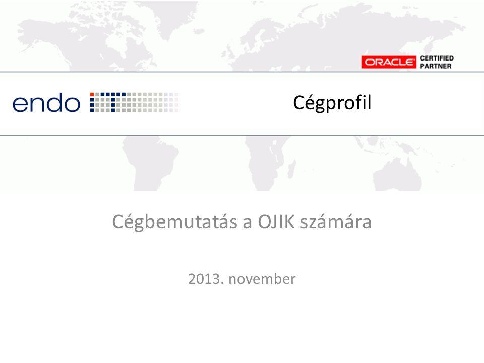 Cégbemutatás a OJIK számára 2013. november Cégprofil