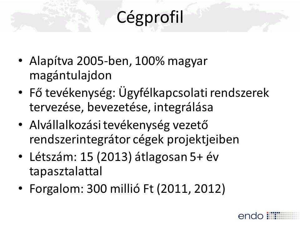 Alapítva 2005-ben, 100% magyar magántulajdon Fő tevékenység: Ügyfélkapcsolati rendszerek tervezése, bevezetése, integrálása Alvállalkozási tevékenység
