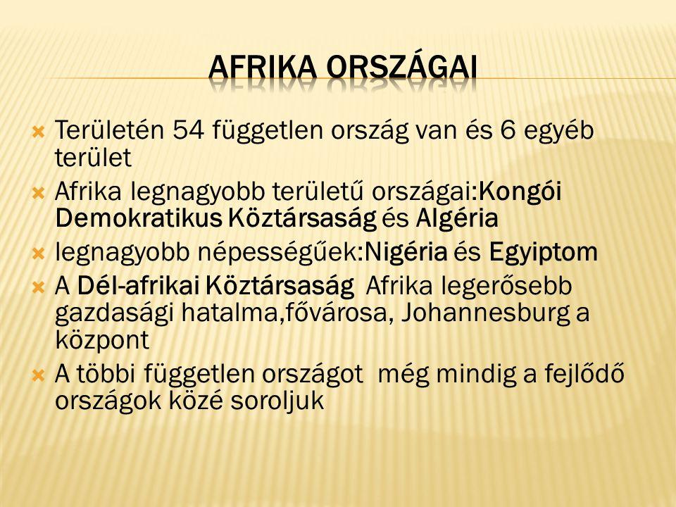  Területén 54 független ország van és 6 egyéb terület  Afrika legnagyobb területű országai:Kongói Demokratikus Köztársaság és Algéria  legnagyobb népességűek:Nigéria és Egyiptom  A Dél-afrikai Köztársaság Afrika legerősebb gazdasági hatalma,fővárosa, Johannesburg a központ  A többi független országot még mindig a fejlődő országok közé soroljuk